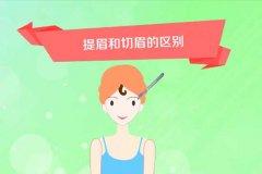 切眉和提眉的区别在哪?效果有什么不同?
