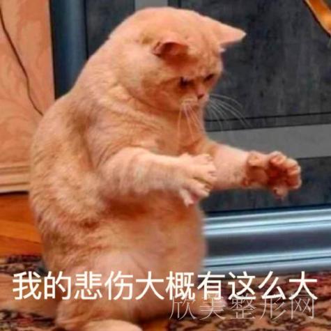 北京矫正牙齿哪家医院最好