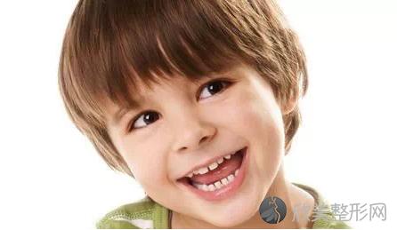 恒牙和乳牙的主要区别