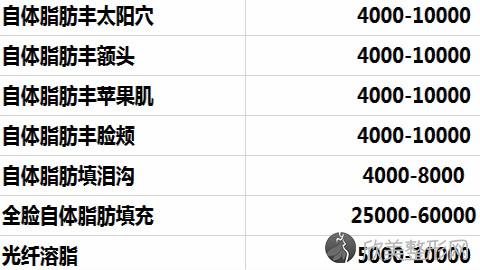 成都玉之光刘中国脂肪填充好吗?全脸脂肪填充案例及价格表