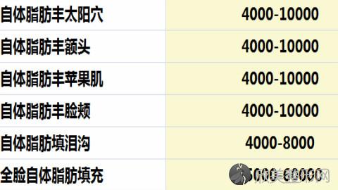 上海美莱袁玉坤做脂肪填充怎么样?超赞面部脂肪填充案例及价格表